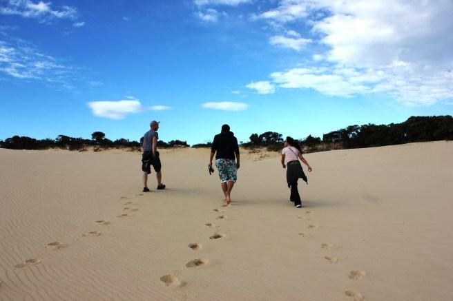En busca de la playa