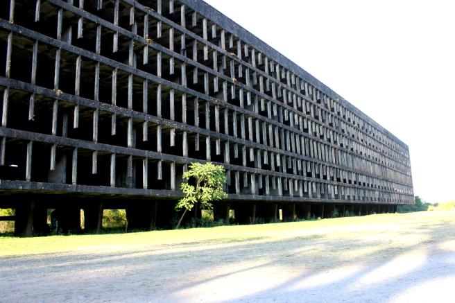 Campus Universitario abandonado.