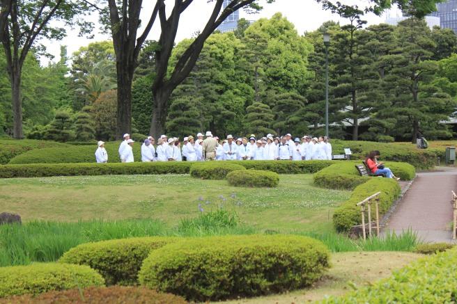 Tipico grupo de japoneses visitando los jardines